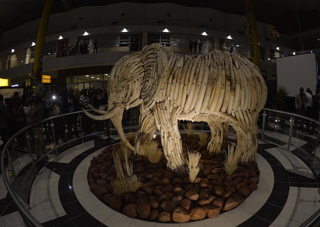 BOTSWANA , Gaborone 16 July 2015, Botswana president let Gen. Seretse Khama Ian Khama officially unveils the live size Elephant Sculpture of ivory at the Sir Seretse Khama International Airport in Gaborone on 16 July 2015. The ivories comes from the elephants which died naturally. (PHOTO/MONIRUL BHUIYAN)